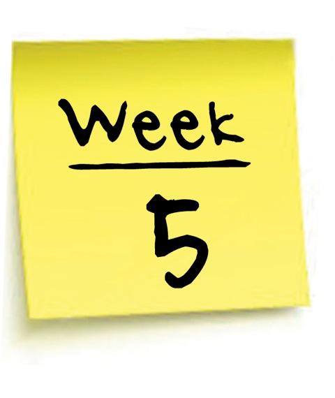 Week 5 Term 3